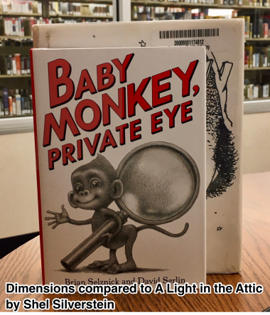 Baby Monkey Dimension Comparison